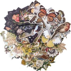 TIM HOLTZ® IDEA-OLOGY™ - Layers Die-cuts - Botanical - TH93554